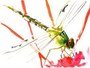 Green Red Dragonfly by Suren Nersisyan