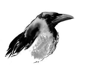 Hooded Crow by Suren Nersisyan