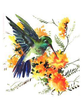 Hummingbird 6 by Suren Nersisyan