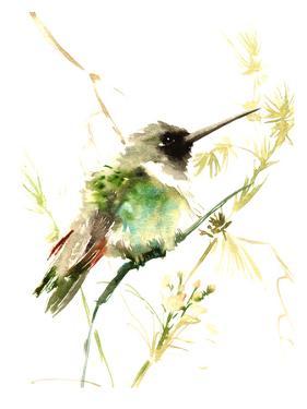 Hummingbird2 by Suren Nersisyan