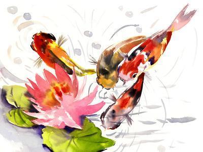 Koi Fish Pond 3