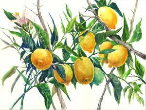 Lemons On The Tree 3 by Suren Nersisyan
