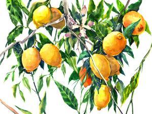 Lemons On The Tree 4 by Suren Nersisyan