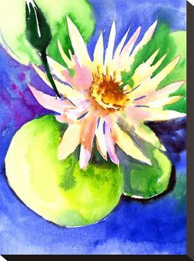 Lotus by Suren Nersisyan