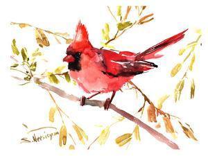 Northern Cardinal by Suren Nersisyan