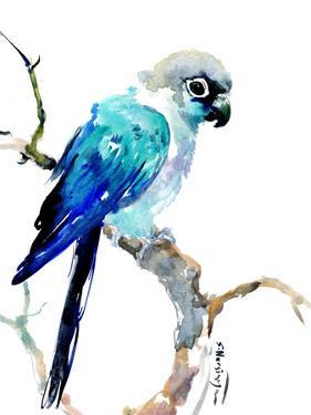 Parrot Suren by Suren Nersisyan
