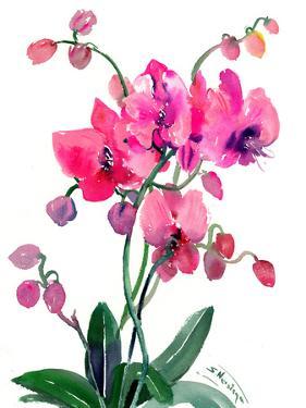 Pink Orchids 2 by Suren Nersisyan