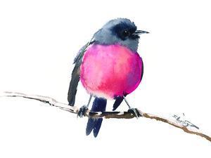 Pink Robin by Suren Nersisyan