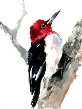 Red Headed Woodpecker by Suren Nersisyan