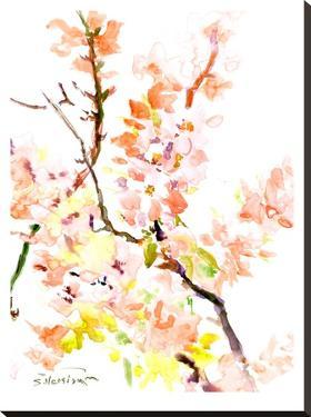 Sakura Cherry Blossom by Suren Nersisyan