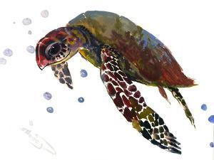 Sea Turtle 6 by Suren Nersisyan