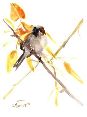 Sparrow 3 by Suren Nersisyan
