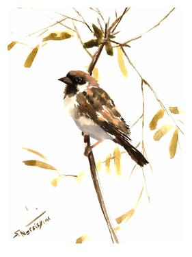 Sparrow 5 by Suren Nersisyan