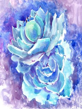 Succulent Turquoise Blue Purple by Suren Nersisyan