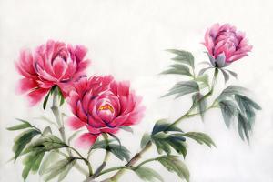 Three Peonies by Surovtseva