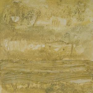Sandstorm Harmony by Susan Brown