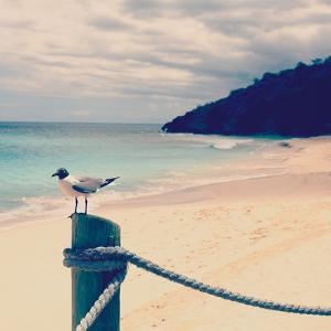 Island Vacation III by Susan Bryant