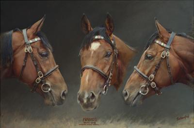 Frankel (Undefeated Brilliant Racehorse)