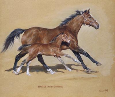 Hasili with Foal