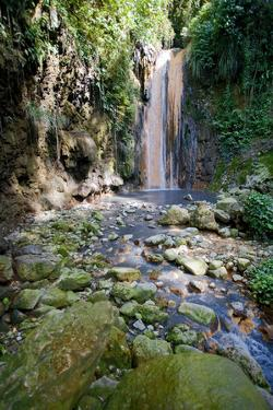 Diamond Waterfall, Diamond Botanical Gardens, St. Lucia, West Indies by Susan Degginger