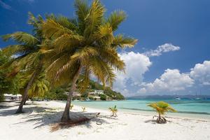 Great Harbor, Jost Van Dike, British Virgin Islands by Susan Degginger