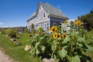 Monhegan Island, Maine by Susan Degginger