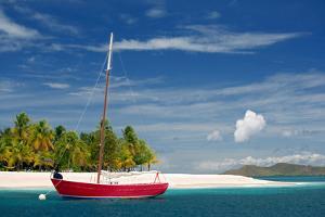 Palm Island, Grenadines, West Indies by Susan Degginger