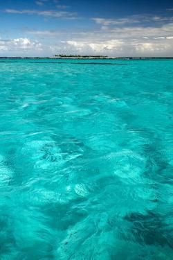 Tobago Cays, Grenadine Islands, British West Indies by Susan Degginger