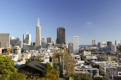 A View from Telegraph Hill, San Francisco, California, USA