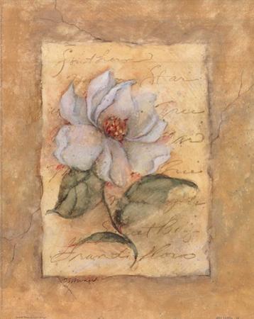 Grandi Flora by Susan Winget