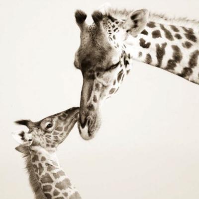 Precious Moments I by Susann & Frank Parker
