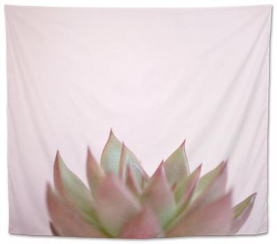 Desert Flora 4 by Susannah Tucker