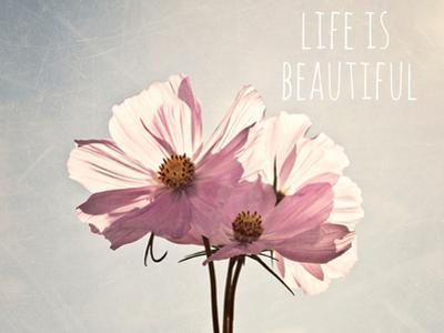 Life Is Beautiful by Susannah Tucker