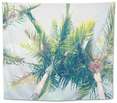 Sun Speckled Palm Trees