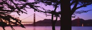 Suspension Bridge Over Water, Golden Gate Bridge, San Francisco, California, USA