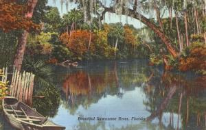 Suwannee River, Florida