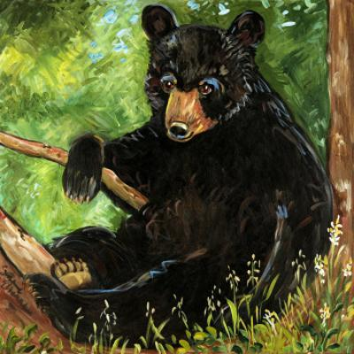 Baby Bear by Suzanne Etienne