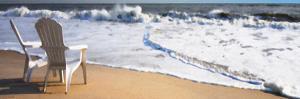 Adirondaks On The Beach by Suzanne Foschino