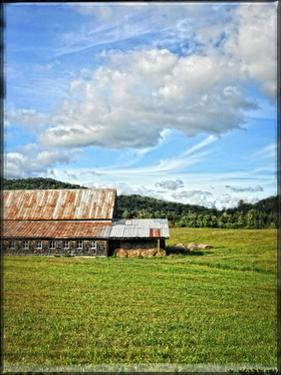 Country Barn 5 by Suzanne Foschino