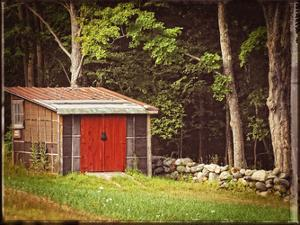 Country Red Door Shack Vintage by Suzanne Foschino