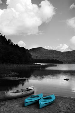 Kayak Teal by Suzanne Foschino