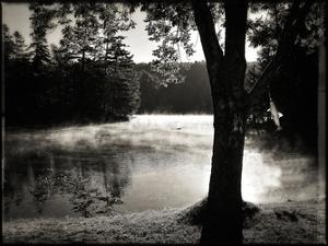 Morning Smoke 2 by Suzanne Foschino