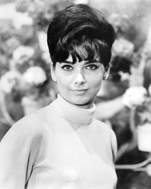 Suzanne Pleshette, The Ugly Dachshund (1966)