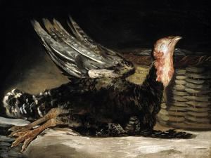 A Dead Turkey, 1808-1812 by Suzanne Valadon