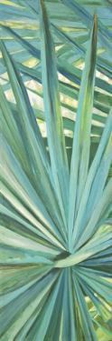 Fan Palm I by Suzanne Wilkins