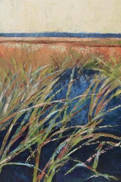 Pastel Wetlands I by Suzanne Wilkins