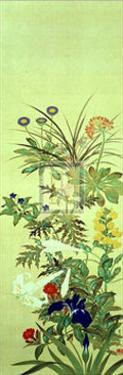 Flowers and Grasses II by Suzuki Kiitsu