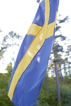 https://imgc.allpostersimages.com/img/posters/swedish-flag-close-up_u-L-Q1EXUNM0.jpg?artPerspective=n