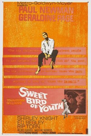 Sweet Bird of Youth, 1962, Directed by Richard Brooks