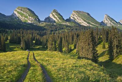 https://imgc.allpostersimages.com/img/posters/switzerland-st-gallen-chur-prince-alpine-grassland-lanes_u-L-Q11YM9J0.jpg?p=0